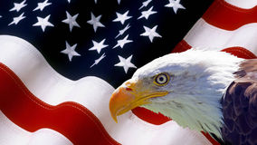 Nordamerikanischer Weißkopfseeadler auf amerikanischer Flagge Lizenzfreie Stockfotos