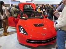 Nordamerikanisches Auto des Jahres Lizenzfreie Stockfotos