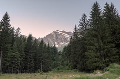 Nordend szczyt przy wschodem słońca w Macugnaga, Włochy zdjęcie stock