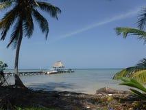 Nordende Amber Caye Belize Stockfotografie