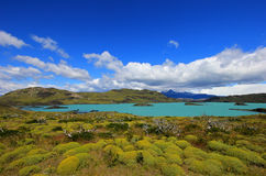 Nordenskjold lake, Torres Del Paine National Park, Patagonia, Chile. Southamerica Royalty Free Stock Image