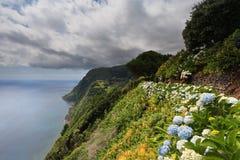 Nordeste, Azores Royalty Free Stock Photo