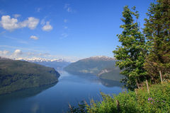 Nordfjord im Sommer Lizenzfreie Stockbilder