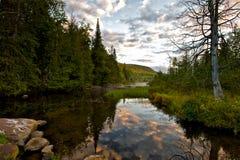 Nordfluss-Morgen-Glück Stockbilder
