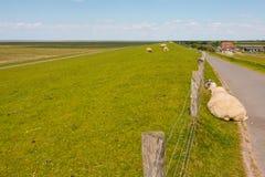 Nordfriesland Stockfoto