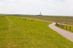 Nordfriesland Zdjęcia Stock