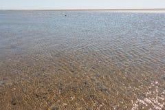 Nordfriesland. Big sandbank at low tide in Sankt Peter-Ording in Nordfriesland, Schleswig-Holstein, Germany stock photos