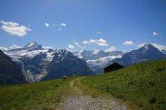 Nordgesicht des Bergs Eiger Stockbild