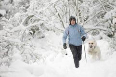 Nordic che cammina con il cane Fotografia Stock Libera da Diritti