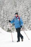 Nordic che cammina nella neve fotografie stock