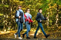 Nordic, der - aktive ausarbeitende Leute geht Lizenzfreie Stockfotografie