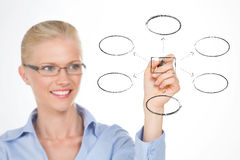 Nordic girl illustrating the organizational chart of her company Royalty Free Stock Images