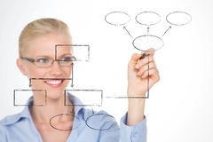 Nordic girl illustrating the structure of her company Stock Photography