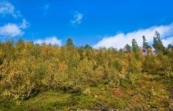 Nordic landscape Stock Images