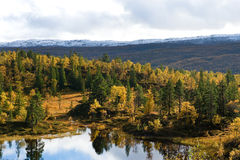 Nordic landscape Royalty Free Stock Image