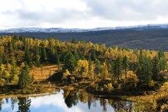 Nordic landscape Royalty Free Stock Image
