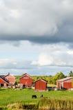 Nordic landscape Stock Image