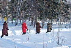 Nordic marchant en parc d'hiver photo libre de droits