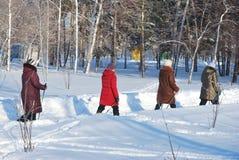 Nordic marchant en parc d'hiver photo stock
