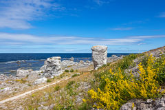 Nordic nature of Gotland, Sweden Royalty Free Stock Images