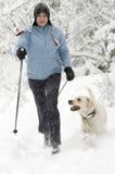 Nordic que anda com cão imagens de stock royalty free