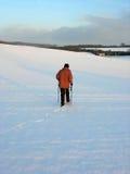 Nordic que anda no campo inglês Imagem de Stock Royalty Free