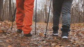 Nordic que anda no parque do outono - duas senhoras superiores idosas tenha a formação exterior - pés perto acima Imagem de Stock Royalty Free