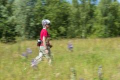 Nordic que camina en el prado Fotos de archivo