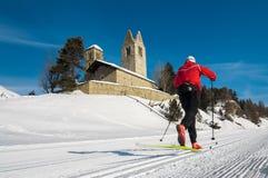 Nordic ski Royalty Free Stock Image