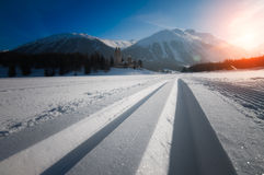 Nordic ski royalty free stock photography