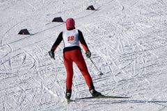 Nordic skier in red in white winter nature full of snow. Sport active photo royalty free stock photos