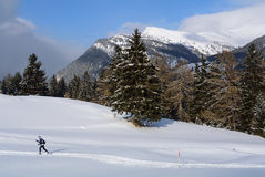 Nordic Skiing, Nauders, Austria Royalty Free Stock Photo