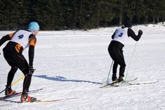 Nordic skiing, winter holidays in Alps, cross country skier in mountains.  royalty free stock image