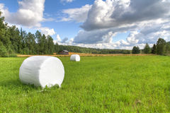 Nordic summer. Hay bales on a nordic summer landscape royalty free stock images