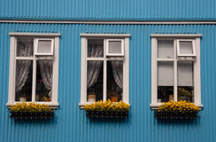 Nordic typical windows - Iceland, Reykjavik Royalty Free Stock Photo