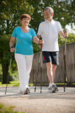 Nordic walking. Senior couple Nordic walking in the park stock photography