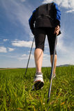 Nordic walking 3 Royalty Free Stock Images