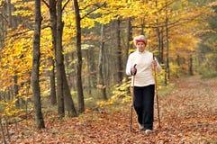 Nordic walking. Senior woman train nordic walking Royalty Free Stock Photo