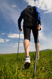 Nordic walking. In the summer Royalty Free Stock Photo