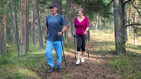 Nordic walking - active senior couple on the forest trail