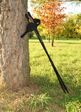 Nordic walking on the autumn park. Stock Photo