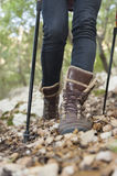 Nordic Walking details Royalty Free Stock Photo