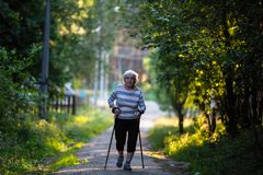Nordic walking. Elderly woman with ski poles is on the road. 90 years old royalty free stock image