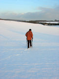 Nordic walking in english countryside. Woman crossing a snow covered field in the english countryside using nordic poles Royalty Free Stock Image