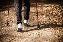 Nordic walking. Female legs hiking in forest or park. Stock Image