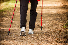 Nordic walking. Female legs hiking in forest or park. Royalty Free Stock Photos
