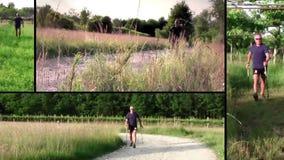 Nordic walking stock video footage