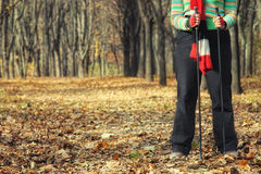 Nordic walking in forest Royalty Free Stock Image