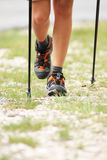 Nordic walking legs in mountains Stock Photography