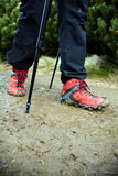 Nordic Walking legs on trail Stock Images